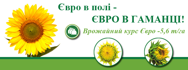 http://vnis.com.ua/catalog/oil-seed/sunflower/euro/