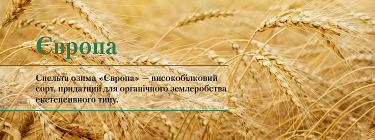 http://vnis.com.ua/catalog/seeds-of-cereals/spelled-winter/Europe/